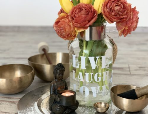Tagesretreat! Yin Yoga & veganer Kochkurs am 7.11.! AUSGEBUCHT!
